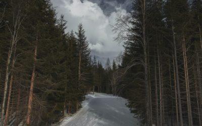 2020 Chelsea Ski Challenge