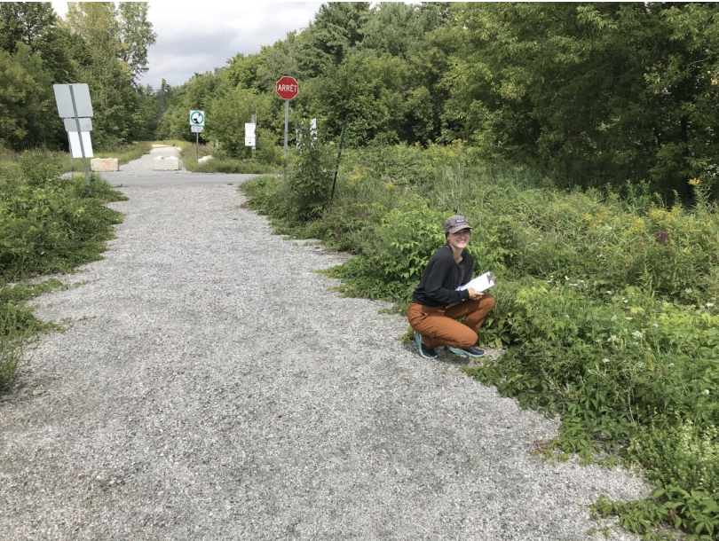 Chelsea Community Trail: Noxious and Invasive Plant Survey